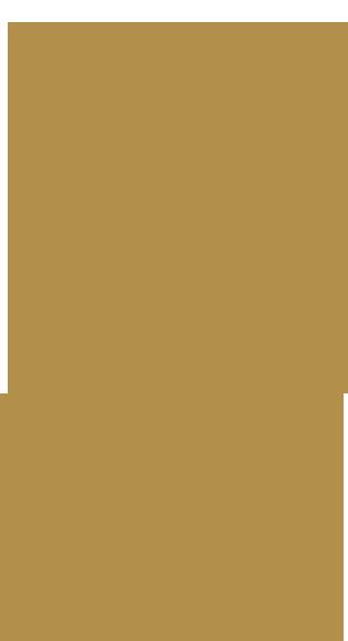 Profile-01