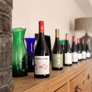 Vista de botellas de vino crianza listas para servir